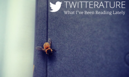 Twitterature: What I've Been Reading Lately » asacredjourney.net